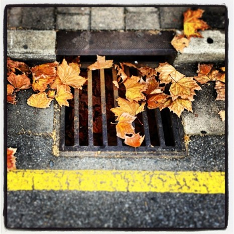 Autumn Gutter