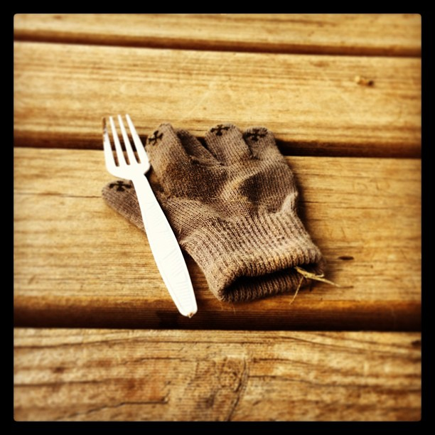 Fork and Glove (a parable)