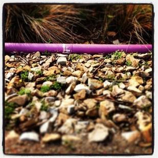 Purple Pipe